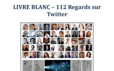 "[Presse] Livre blanc ""112 regards sur Twitter"" par Alban Jarry"